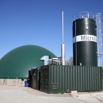 Manure biogas plant