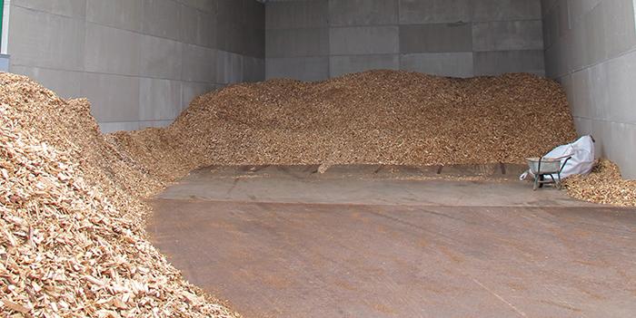 biomass fuels