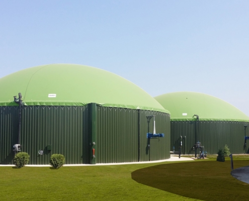 farm scale biogas plants