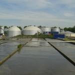 Sludge biogas plant
