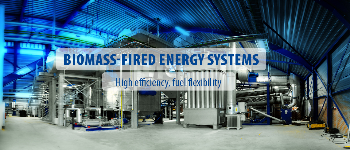 Biomass-fired energy plants