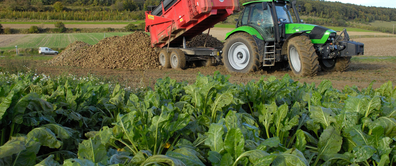 New Biogas Plant Orders in Ukraine and Belgium