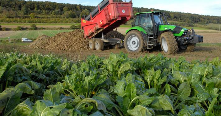 New Biogas Plants in Ukraine and Belgium